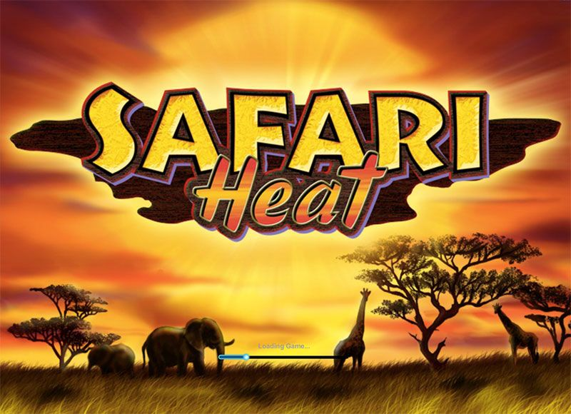 Safari Heat splash screen
